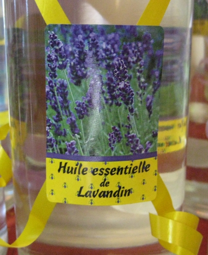 lavandin-a-hybrid-species-to-lavender